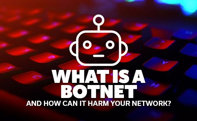 what-is-a-botnet.jpg