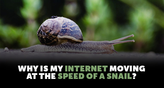 internet-speed-of-a-snail